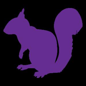 purple-squirrel